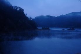 朝霧のなかに揺蕩う